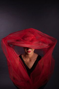 Lady in red van Willy Sybesma