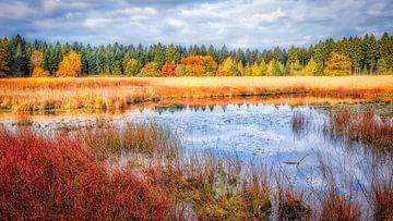 Beleef de herfst in Drenthe