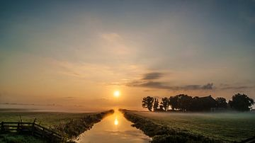 De brede ochtendsloot van Sparkle King
