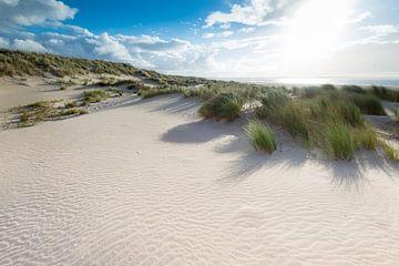 Maasvlakte 15 van Deshamer