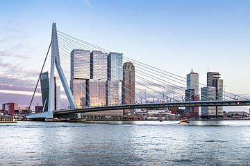 Erasmusbrug Rotterdam  van Midi010 Fotografie