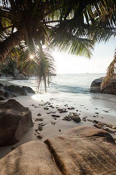 Paradies Bucht von Jiri Viehmann