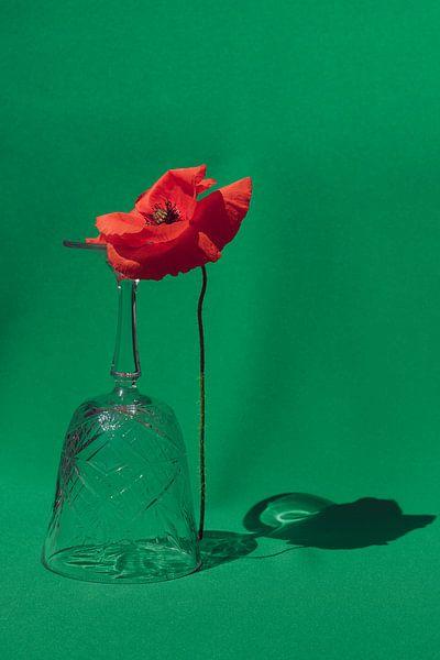 Klaproos met glas van Emilia Aivazian Fotografie