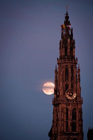 Kathedraal van Antwerpen met supermaan