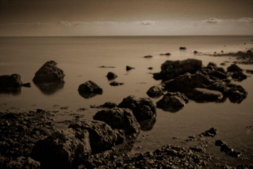 Rocks 5133sepia van Rudy Umans