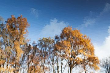 Herfst spiegeling