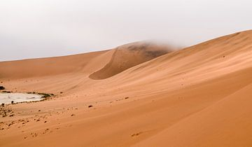 Namib Woestijn in Afrika