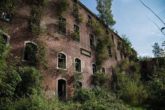 Fort de la Chartreuse - Heroverd door de natuur