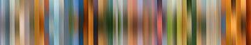 Kleurenpalet van De Onlanden van Reina Nederland in kleur