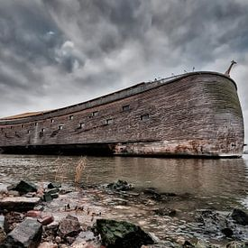 De ark van Noach in Dordrecht van Tammo Strijker