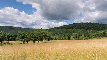 Heuvellandschap in de buurt bij Mespel von
