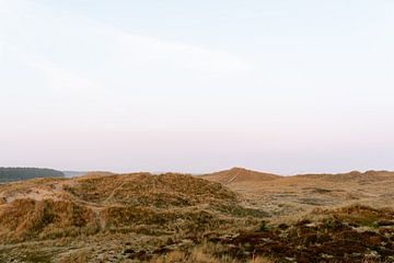 Duinen van Terschelling || Reisfotografie Nederland Midsland Kust Fine art Zachte kleuren Groen helm van Manon Galama