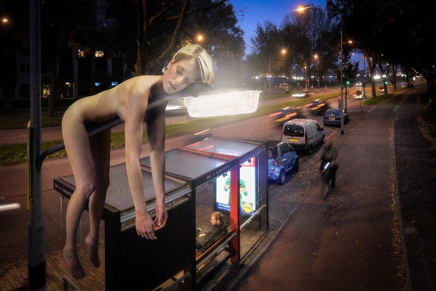 Just Hanging Around van Stefan Witte