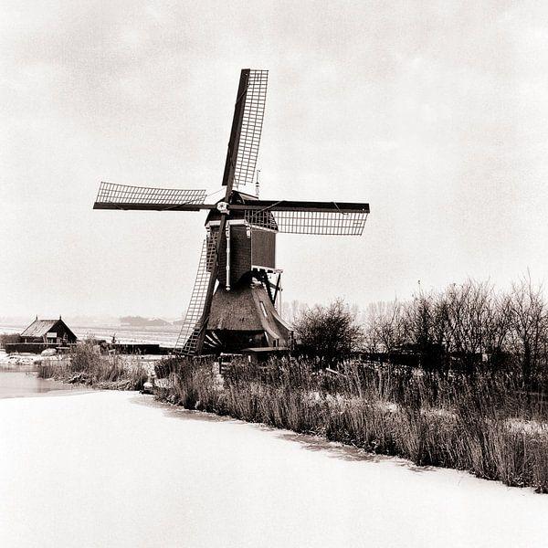 Molen in de polder van Rob van der Teen