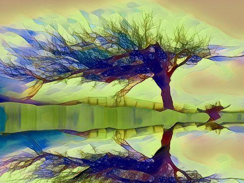 Boom aan de waterkant, weerspiegeling