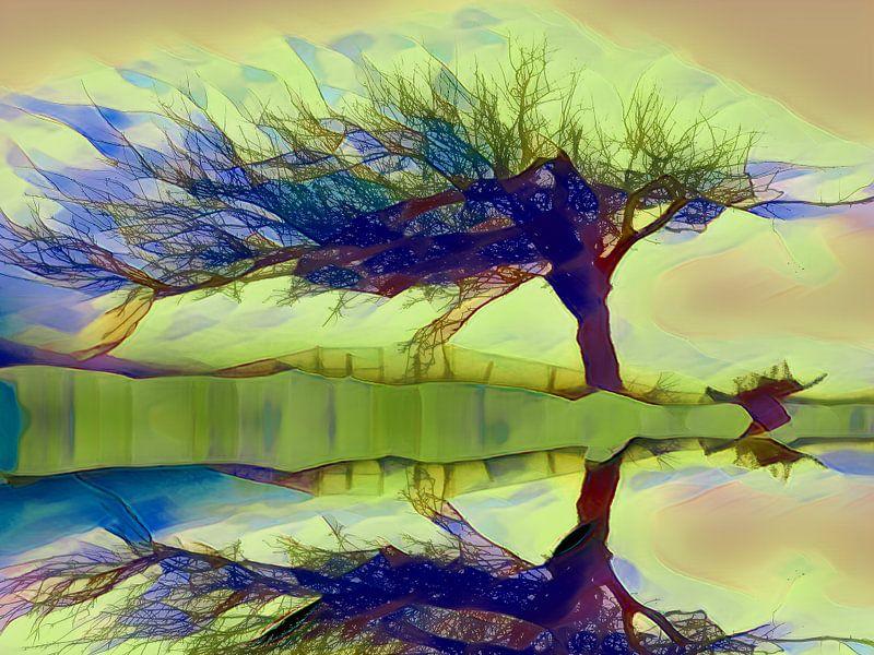Boom aan de waterkant, weerspiegeling van Rietje Bulthuis
