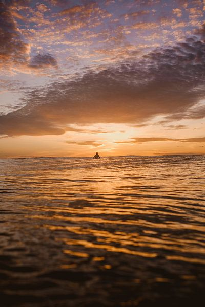 Surfer à Mentawai sur Andy Troy