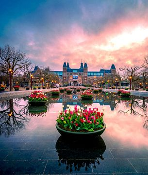 Tulpemmania in Amsterdam van Bas Banga