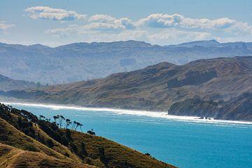 De kust van het Noordereiland bij Mahia Peninsula, Nieuw-Zeeland van Paul van Putten