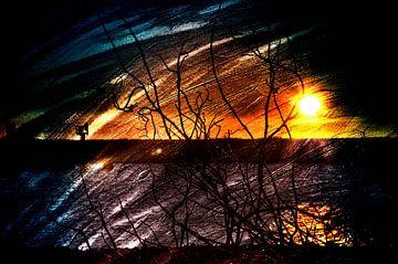 eveninglight van JF art