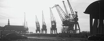 Kranen in de Antwerpse haven van