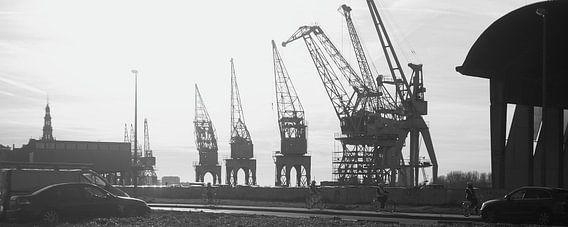 Kranen in de Antwerpse haven