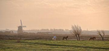 Hollands landschap van Marcel van Balken