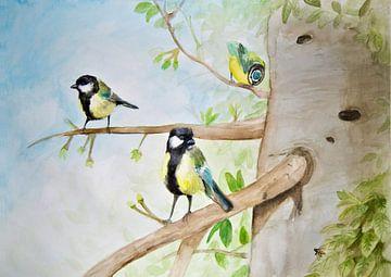 die drei Vögel von Marjolijn Vledder