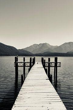 Rast in Te Anau - Neuseeland (Schwarz-Weiß) von Be More Outdoor