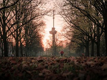 Euromast in herfstsfeer van Marcel Kool