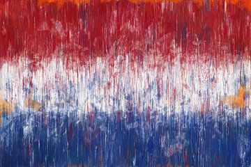 Nederlandse vlag van Arjen Roos