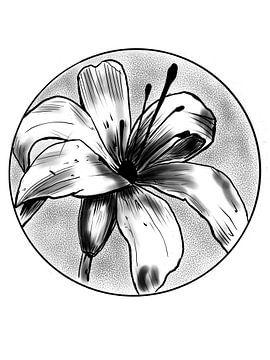 Blume von Blckwork ..