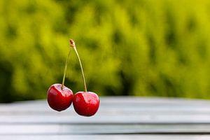 Rode kersen van