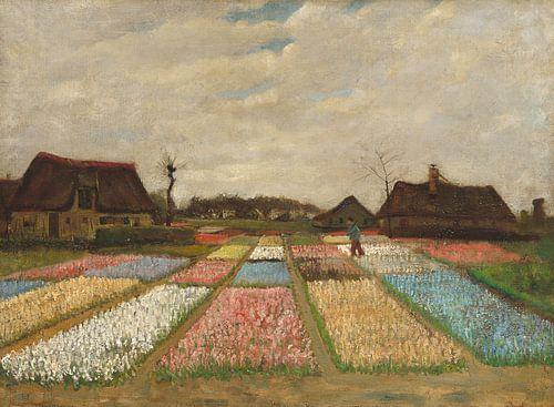 Flower Beds in Holland