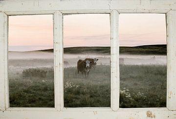Boerderijraam met koeienweide van Co Seijn