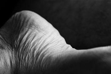 Puur, mijn huid van Catherine Blancquaert