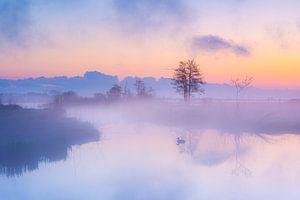 Sonnenaufgang im Nationalpark Weerribben-Wieden von Wilko Visscher