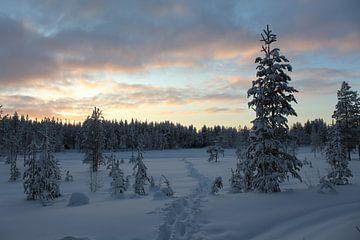 Pad door de sneeuw met mooie lucht in Fins Lapland van Remco Phillipson