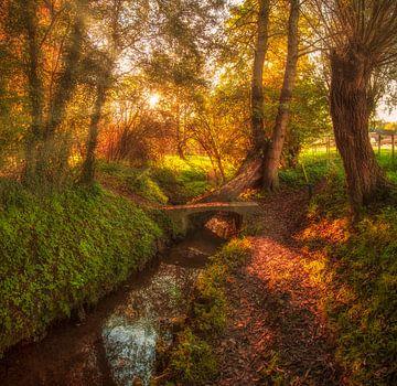 Herfstkleuren in Simpelveld von John Kreukniet