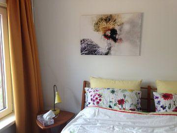 Kundenfoto: Kraanvogel von Monica Zimmermans