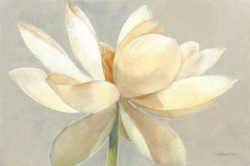 Ontplooiende licht, Albena Hristova van Wild Apple