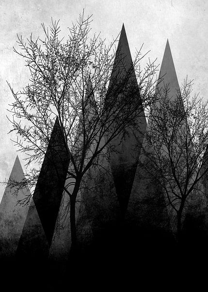 TREES VIa van Pia Schneider