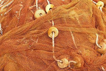 Visnetten, koffiekleur van Inge Hogenbijl