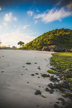 Sumbawa landschap von Andy Troy