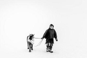 Nenet, Rentierzüchter, mit Rentieren in Sibirien von Milene van Arendonk