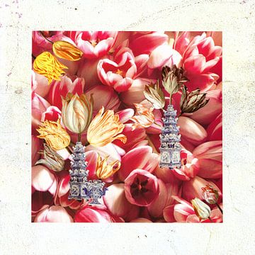 tulpenmanie van Hella Kuipers