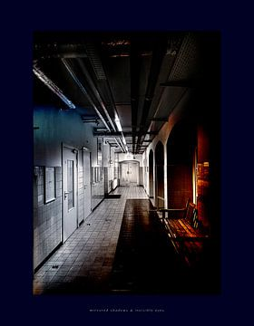 Mirrored shadows  invisible eyes van Han Overgaauw