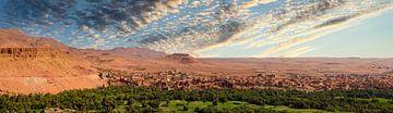 Oase in de woestijn, Marokko van Rietje Bulthuis