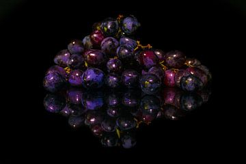 Blauwe Druiven van Lisa Kompier