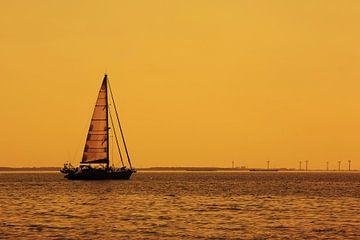 Zeilboot op zee van Frank Herrmann